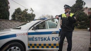 Majitel nechal svého psa v Brně dva dny v rozehřátém autě. Na vzduch mu pomohli strážníci