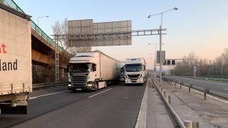 Živá zvířata naložená v kamionech trpí v dlouhých kolonách. Pomáhají jim policisté