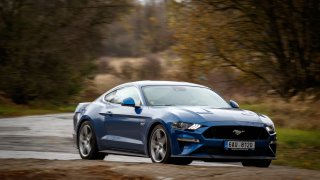 Ford Mustang jízdní 16