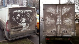 Umělec kreslí nádherné obrazy na špinavá auta 1