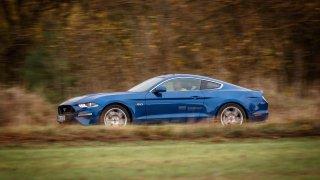 Ford Mustang jízdní 10