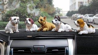 Psi na palubní desce