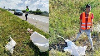 Masakr na dálnici D5. Šofér kamiónu se před ostatními řidiči snažil zachránit rodinu labutí