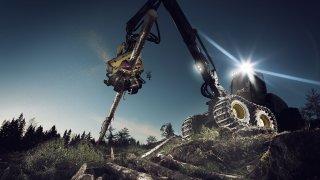 Působivá technika pro lesní těžbu. Většinou obouvá