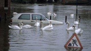 """Hrozí, že zaplavená auta dorazí na náš trh ojetin. Ostražitost u """"výhodných"""" nabídek je na místě"""