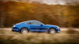 Ford Mustang jízdní 9