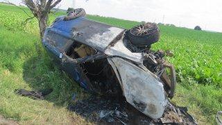 Řidičce do auta vlétl sršeň. Takhle to dopadlo, udělala totiž zásadní chybu