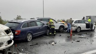 Nejen škody na autě. Viník nehody musí zaplatit třeba i zraněné zvíře nebo zrušenou dovolenou