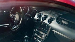 Ford Mustang - Obrázek 1