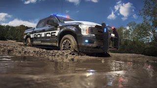 Policejní verze Fordu F-150 se nebojí ani terénu.