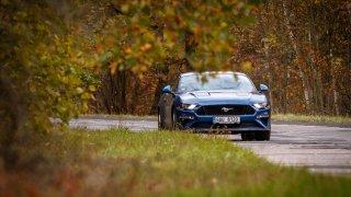 Ford Mustang jízdní 1