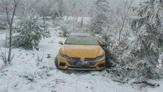Krádež, nebo zastírání ostudy? Volkswagen Arteon zapadlý v lese pod Jedlovou horou baví internet