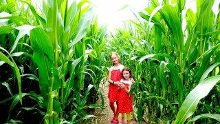 Tip, jak nechat děti na dovolené vypařit. Léto v kukuřici ve vesnici Roseč.