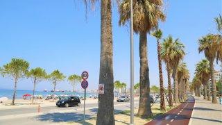 Palmy, široká pěší zóna, stezka pro cyklisty