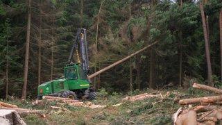 Strom dokáže harvestor naporcovat doslova za pár s