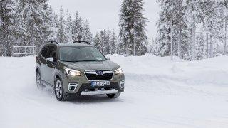Subaru Forester e-Boxer 2020 Laponsko
