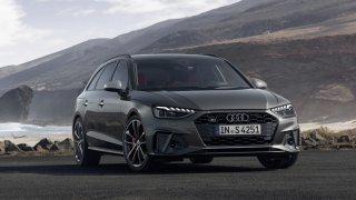 Audi S4 Avant TDI 2019 3