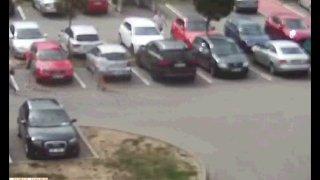 Seniorka měsíce potají ničila karoserie aut škrábanci od klíčů. Její motiv uzemnil nejen policisty