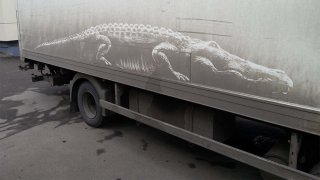 Umělec kreslí nádherné obrazy na špinavá auta 4