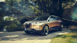 Zaměřeno na budoucnost. BMW Vision iNEXT.