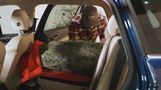 Znehybnět, někdy označit praporkem. Převážení vánočního stromu má pravidla, za porušení hrozí pokuta